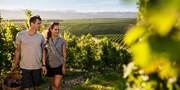 $799 -- New Zealand Wildlife & Wine Adventure w/Tours