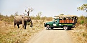 $2399 -- South Africa 10-Night Trip: Best Time to Spot Big 5