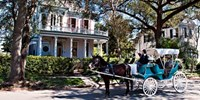 $1149 -- New Orleans & Cajun Country: 6-Night Escorted Tour