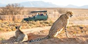 $1899 -- Kenya Safari w/Nairobi, Game Drives & Air