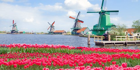 Spring River Cruises in Holland: Now US$999