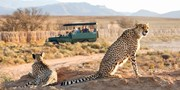 $1699 -- South Africa 6-Night Safari from New York