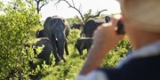 South Africa 11-Night Trip w/Safari & Air, $1000 Off