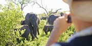 South Africa 11-Night Trip w/Safari & Air, $1100 Off