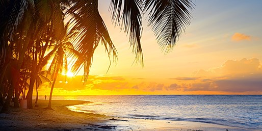 $149* & up -- Mexico & Hawaii on Sale this Fall (One Way)