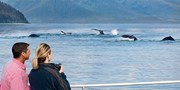 $499 -- Oceanview: Alaska 7-Night Cruise on Holland America