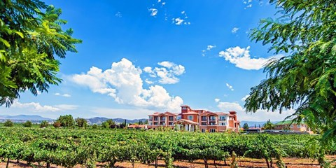 $169 -- SoCal: Temecula Wine Country Escape, 55% Off