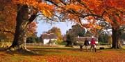 £89 & up -- 12 Fantastic UK Autumn Getaways, Save up to 63%