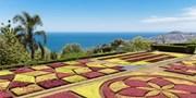 ab 350 € -- Frühjahrs-Sonne auf Madeira im 4*-Hotel mit Flug