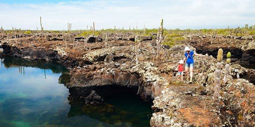 $3152 & up -- Galapagos Cruise & Quito Vacation 6-Nt w/Air