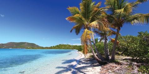 £882pp -- 13-Night P&O Caribbean Transatlantic Fly/Cruise