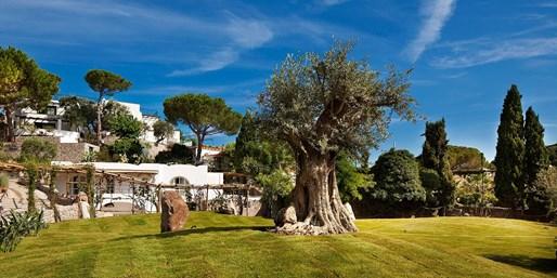 £599pp -- Luxury 'Italian Oasis' Holiday w/'Indulgent' Meals