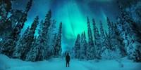 £399pp -- Finland Escape inc Reindeer & Husky Sleigh Rides