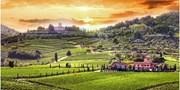 $1399 -- Tuscany 6-Night Food & Wine Tour w/Air