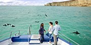 $669 -- New Zealand: Self-Drive Whale Watching & Wine Tour
