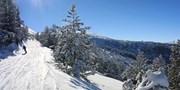 £229pp -- 4-Night Bulgaria Last-Minute Ski Break