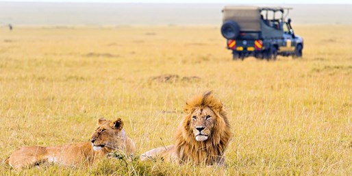 $2999 -- Kenya Safari w/Game Drives & Air, Save up to $1200