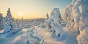 £439pp -- Lapland: 8-Nt Deluxe Self-Catering Christmas Break
