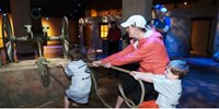 $12.50 -- Interactive Battle of the Alamo Exhibit, Reg. $21