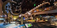 $60 -- Dallas: 9-Day Pass to Top Attractions, Reg. $100