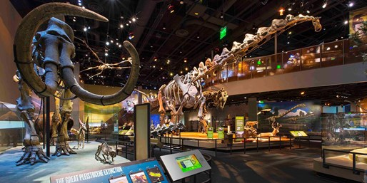 $46 -- Dallas: 9-Day Pass to Top Attractions, Reg. $77