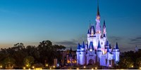 25% Off -- Walt Disney World Tickets for Canadians