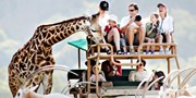 $189 -- Sonoma: Luxe Safari 'Glamping' Experience