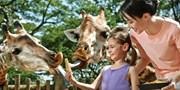 低至 53 折 新加坡動物園/濱海灣花園/River Safari 門票激減 早鳥優惠