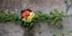 【日本 Mami Flower 中国唯一指定花艺教室】独家设计 mini 圣诞树花艺课 会员专场