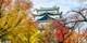¥2,399起 -- 含税!广州往返东京+名古屋6日机票 赠日本个人旅游签证
