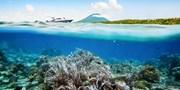 ¥2,399起 -- 海岛新宠&深蓝诱惑!美娜多 5-6 天自由行 送当地一日游