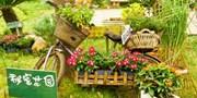 【上海】自然是孩子最好的老师!认识嫩芽 / 喂养动物 / 采摘蔬果 [会员福利] 一日亲子农场之旅