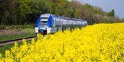 $30 -- High-Speed Train Fares from Paris through Summer