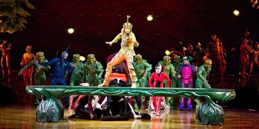 Cirque du Soleil 'Ovo' in Baton Rouge & Lake Charles