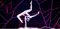 $35 -- Presale: 'Ovo' by Cirque du Soleil in Greenville