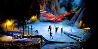 Cirque du Soleil: Last Chance for 'Toruk' in Vancouver