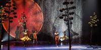 'Spectacular' Cirque du Soleil Show 'Luzia': $67, Reg. $95