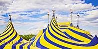 $39  -- Cirque du Soleil: New Show 'Volta'