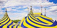 $39 -- New Cirque du Soleil Show Comes to Ottawa Area