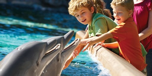 $69 -- SeaWorld San Diego: 7 Days of Unlimited Visits