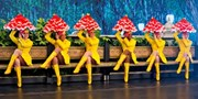 $39 -- Rockettes 'Spectacular' at Radio City