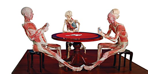 $19 -- Last Chance: 'Body Worlds' Exhibit in Times Square