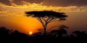 $5140 -- 9-Night Kenya & Tanzania Tour w/Serengeti Safari