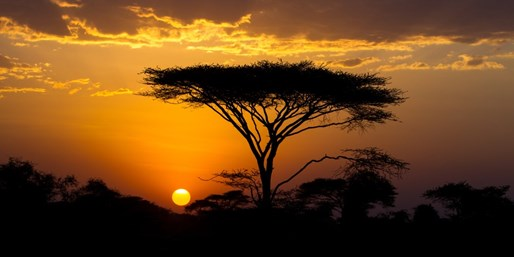 $4940 -- 9-Night Kenya & Tanzania Tour w/Serengeti Safari