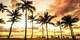 ¥106,700 -- ハワイ・ヒルトン高層階オーシャンビュー指定5日間 空港送迎付