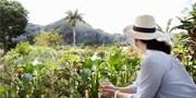 2399 € -- Einzigartiges Kuba: Rundreise & Strand, -600 €