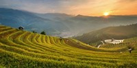 £2039pp -- Vietnam: 13-Night Tour w/Sapa & Halong Bay Cruise