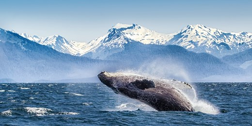 £1399pp -- Alaska Cruise w/San Diego Stay & LA Train