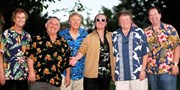 $20 -- Celebrate the Music of The Beach Boys in Detroit
