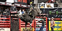 $26 -- Top-Ranked Pro Bull Riders in San Jose, 50% Off